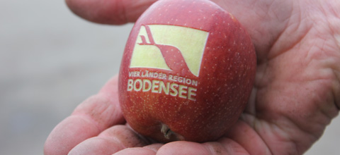 """edible messages"" with laser technology in the peel of red apples"